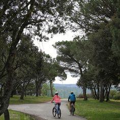 Coneixeu les rutes BTT de l'hotel?? En surten 3 des de l'hotel i en podeu fer moltes més al Parc Natural del Montseny!