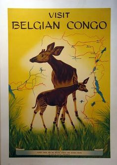 The congo became a place of curiosity and many Belgians and other Europeans traveled their and made it their home