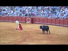 Corrida de Toros en Seville España (Spanish Bullfight) Part 2