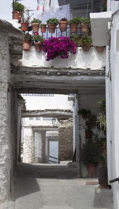 Las Alpujarras, Andalucia, Spain