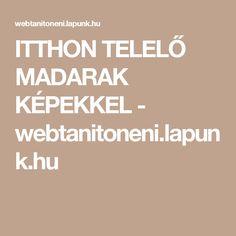 ITTHON TELELŐ MADARAK KÉPEKKEL - webtanitoneni.lapunk.hu