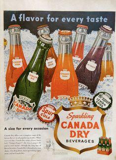 CANADA DRY ad, Colorful 1950 soda pop bottles, picnic beverage wall art collectible, vintage Ginger Ale, Hi Grape Spur Orange kitchen decor