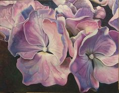 Hydrangea Glow by Joyce Hutchinson on ARTwanted