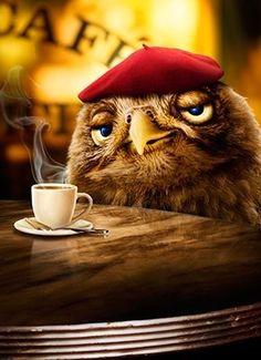 Buenos días owl coffee, i love coffee, coffee shop, coffee pics, coffee I Love Coffee, My Coffee, Morning Coffee, Good Morning, Coffee Break, Coffee Aroma, Brown Coffee, Coffee Mugs, Coffee Cafe