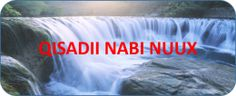 www.gaaldiid.com |