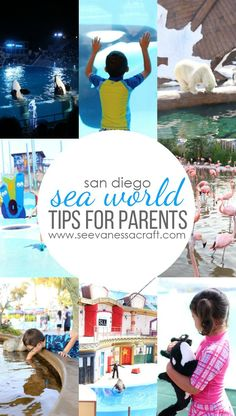 10 Tips for Visiting San Diego Se World with Kids