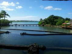 The view at the reception from the Four Seasons, Mauritius