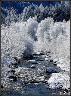The Dolomites, Canazei #Italy | Know more of this ski resort -> www.gadders.eu/destination/place/Canazei