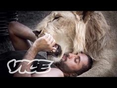 The Illegal Big Cats of Instagram - YouTube