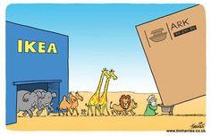 Noach en de IKEA ark