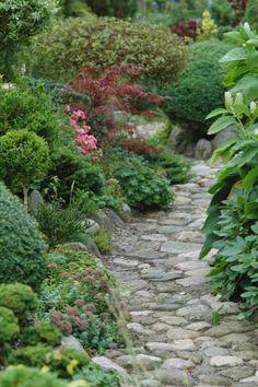 leuk padje in de tuin