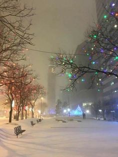 Winter Nights and Christmas Lights beautiful place, peaceful, silent & calm. Find your place