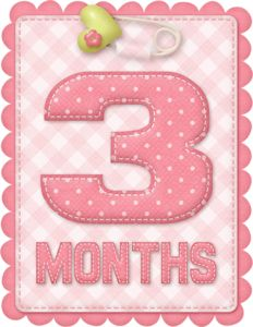 Free Printable Baby Month Counter for Girls. - Oh My Baby! Clipart Baby, Erwarten Baby, Baby Love, Baby Monat Für Monat, Baby Girl Scrapbook, Welcome Baby Girls, Baby Girl Photos, Expecting Baby, Girls Clips