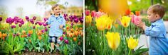 Jessica R Strickland Photography Family Photography, Photography Ideas, Picture Ideas, Photo Ideas, Family Pictures, Tulips, Families, Fine Art, Portrait