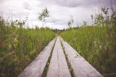 wood planks grass -  wood planks grass free stock photo Dimensions:1500 x 1001 Size:0.36 MB  - http://www.welovesolo.com/wood-planks-grass/