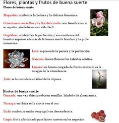 FLORES Y FRUTOS DE LA BUENA SUERTE