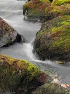 kivet - kivi sammal virta syksy lehti kymi joki puro vesi kotka