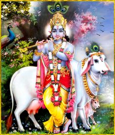 "GOVINDA http://careforcows.org/ Shri Krishna said: ""Whoever knows Me as the Supreme Personality of Godhead, without doubting, is the knower of everything. He therefore engages himself in full devotional service to Me, O son of Bharata.""~Bhagavad gita as it is 15.19 To order a copy of ""Bhagavad Gita as it is"":http://store.krishna.com/Detail.bok?no=2325&bar=_shp_bbt"