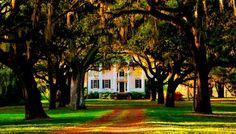 McLeod Plantation - James Island, Charleston County, South Carolina