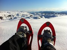 GUIDED SNOWSHOE HIKE - Adventure on the Snow - Mountain Hike with Storytelling - Beautiful Scenery - Cable car to the Summit