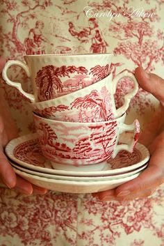 Toile/transferware China pattern -  Have some of this.  It's Spode