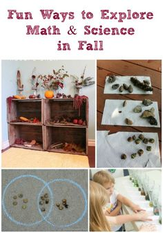 Exploring Science & Math with Fall Activities Like the crate idea for a cheap nature display right by the back door.
