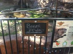 Well played, zoo...well, played.