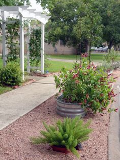 AFTER: raised bed xeriscaping