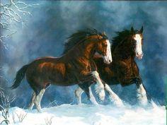 "Horses mating cartoons: ""glucosamine hci horses"""