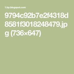 9794c92b7e2f4318d8581f3018248479.jpg (736×647)