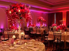 Pin wedding reception lighting. pic from blooming gallery