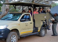 Make the most of your time in the Kruger National Park, which is why our 5 Day Kruger Park safari allows guests to enjoy not one but Two Full Day Game Drives! Kruger National Park, National Parks, Wildlife Safari, Travel Companies, Meet The Team, African Safari, Africa Travel, Giraffe