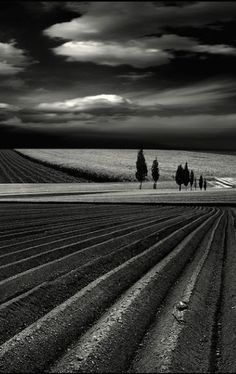 (1) Me gusta   Tumblr landscape photography black and white