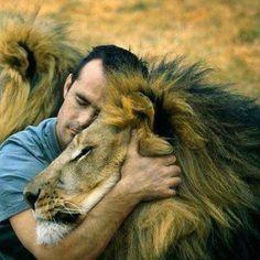 K. Richardson lutte contre les réserves qui élèvent des lions pour les faire abattre par des touristes : rendement juteux, 50 000 dollars par animal. Il reste moins de 4 000 lions sauvages en Afrique et 8 000 en captivité.