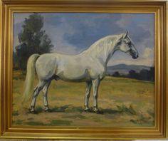 EMIL KOTRBA! PORTRAIT OF THE LIPIZZAN HORSE PLUTO XXVI #Realism