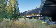 The new Audain Art Museum in Whistler, British Columbia, is the antithesis of the throbbing ski town around it, with its chain stores fashioned as folksy alpine chalets. The highly abstract structure, designed by Vancouver-based Patkau Architects, defers to the surrounding terrain and its wooded site.