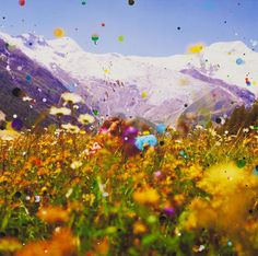 Sebastiaan Bremer (Dutch b. 1970)To Joy: Universal Time Machine © Sebastiaan Bremer/Courtesy Edwynn Houk Gallery, New York It's Spring in NYC, go lie in the grass!