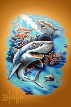 Shark Tattoo Drawing Great white shark tattoo