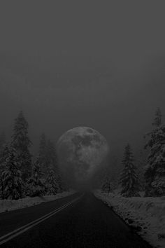 winter moon- jaw dropping. This would make a great picture for the den.