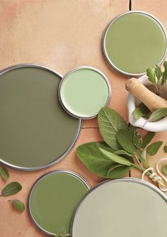 Sage Green Paint, Sage Green Walls, Green Paint Colors, Sage Color, Green Sage, Gray Walls, Color Red, Olive Green, Colours