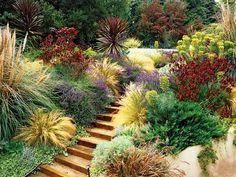 Mediterranean garden. Low water needed, wind tolerant, color pops...it's a win, win landscape for the AV!