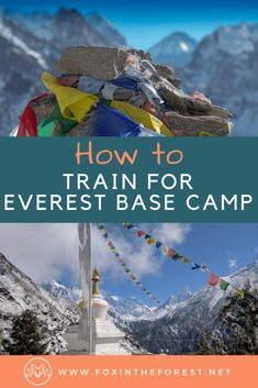 Tips for training for a trek to Everest Base Camp. How to get in shape for an Everest Base Camp Trek. How to train for trekking. Tips for training for hiking and trekking. Hiking Tips, Camping And Hiking, Winter Hiking, Travel Photographie, Climbing Everest, Everest Base Camp Trek, Mount Everest Base Camp, Hiking Training, Himalaya
