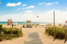 Looking for the best Miami beaches? We go beyond South Beach in our guide to Miami's coolest beaches for locals, tourists and everyone between. Miami Beach, Beach Park, South Beach Florida, Florida Keys, Florida Beaches, Miami Florida, Palm Beach, W Hotel South Beach, Florida Pictures