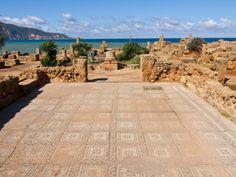 michael-runkel-mosaics-at-the-roman-ruins-of-tipasa-on-the-algerian-coast-algeria-north-africa-africa.jpg (473×355)