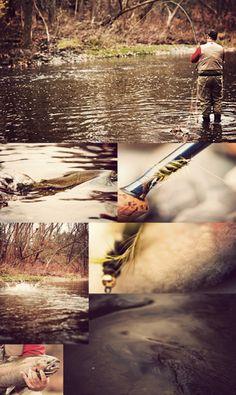 #steelhead fishing