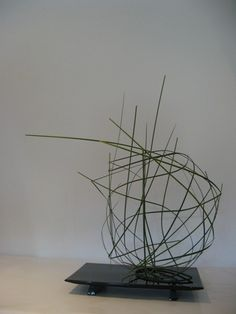 Workshop  met  Ingrid  Conffeng Sogetsu Ikebana