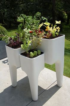 Potager Jardinière design Kiga Blanc 80x72x104cm by Hurbz