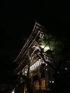 Tonight 知恩院 projection mapping.