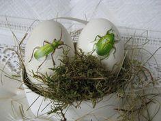 Ein Gänseei mit einem handgemalten Käfermotiv.    Jedes Ei wird nach der Bemalung mit Klarlack überzogen und erhält ein Organzabändchen zum aufhäng...