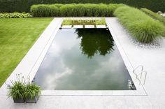 zwemvijver, strakke vorm, zwemvijver aan leggen in tuin